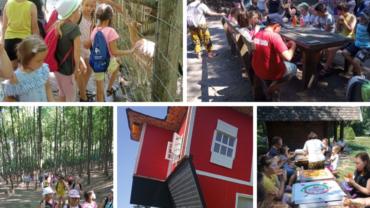 A szentkirályszabadjai gyerekek a Tamási Vadasparkba kirándultak!